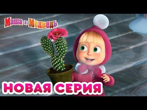 Маша и Медведь -  Весна идет весне дорогу!
